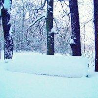 Под снежным покрывалом. :: Miko Baltiyskiy