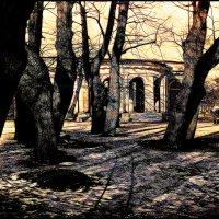 Ранняя весна :: Цветков Виктор Васильевич
