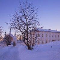 В снежном царстве :: Александра