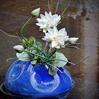 Балийские цветы (2/5) :: Асылбек Айманов