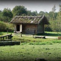 Деревня Бугрово. У небольшого пруда баня, протапливаемая по-черному :: Елена Павлова (Смолова)