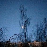 Утро в городе :: екатерина