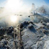 Туманная планета :: Елизавета Митрофанова