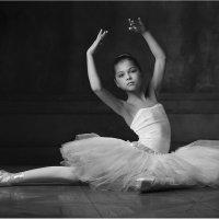 Белый лебедь :: Виктория Иванова