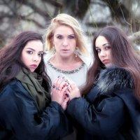 Трое в лесу... :: Андрей Войцехов