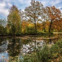 Осень 2 :: Андрей Бондаренко