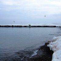 Зима и море :: Людмила