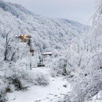 Среди снежного безмолвия... :: Юрий Губков