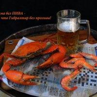 Как чудно спозаранку выпить пива банку! :: Лара Гамильтон