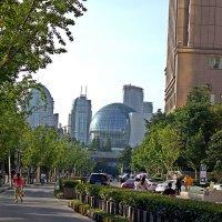 Прогулка  по  Шанхаю . :: Виталий Селиванов