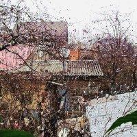 дождь за окошком, дождь... :: Александр Корчемный