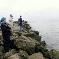 Рыбалка  на Каспии. :: Владимир Драгунский