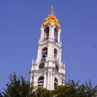 Почти что Пизанская башня :: Светлана Ларионова