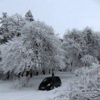 Затерянный в снегах :: Наталья Джикидзе (Берёзина)