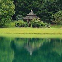 ботанический сад Северная Каролина :: Naum