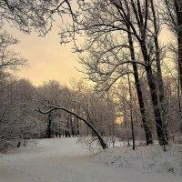 В снежном очаровании... :: Sergey Gordoff