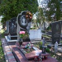Жизнь  -------  это   миг  ........... :: Андрей  Васильевич Коляскин