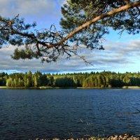 На озере Янисярви. :: Владимир Ильич Батарин