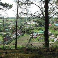 Вид на село с крутого берега Исети :: Михаил Полыгалов
