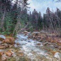 река Гоначхир :: anatoly Gaponenko