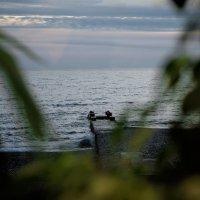 Море :: Алексей Петренко