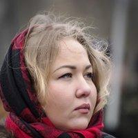 русская красавица :: ник. петрович земцов
