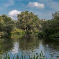 Река Лопасня :: Андрей Бондаренко