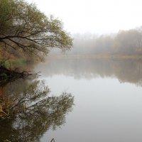 Одевается октябрь в туманы грусти... :: Лесо-Вед (Баранов)
