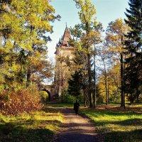 На пути в Готическую сказку... :: Sergey Gordoff