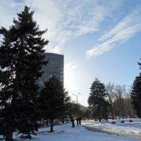 Вечернее небо в феврале... :: Тамара (st.tamara)