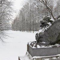 Сфинкс на мостике в Александровском парке :: Татьяна Манн