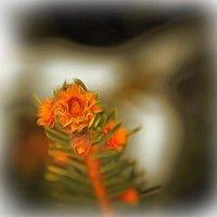 Шишки молодые тянутся к весне... :: Tatiana Markova