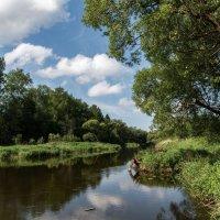 Река Лопасня. :: Владимир Безбородов