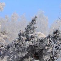 Восход при-30 :: Галина