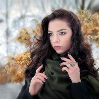 В зимний день...4. :: Андрей Войцехов
