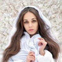 Зимний портрет... :: Андрей Войцехов