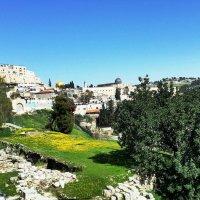 Jerusalem :: Anna Sokolovsky