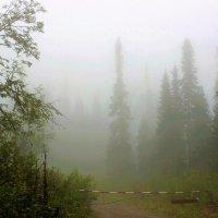 Перед стартом в туман :: Сергей Чиняев
