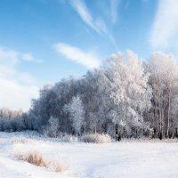 Зимний денек :: Сергей W.Протопопов