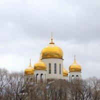 С  Праздником !!! :: Валерий Самородов