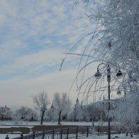 Астрахань зимняя :: Евгения Чередниченко