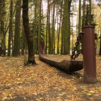 Осень в парке :: Александр Аксёнов