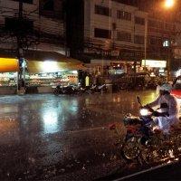 Тропический ливень в городе :: liudmila drake
