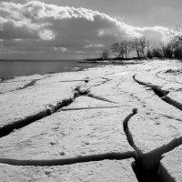 Суровая Волгоградская зима :: Dr. Olver  ( ОлегЪ )