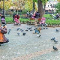 Осень в Городском саду. :: Вахтанг Хантадзе