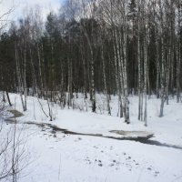 Три дня до весны :: Елена Павлова (Смолова)