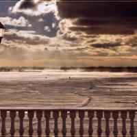 Морозное утро. Набережная Волги. Рыбаки... Фонарь... Чайки... :: Anatol Livtsov