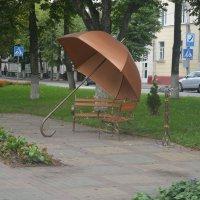 Мега-зонтик :: Светлана Ларионова
