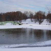 Зима в парке :: Ольга