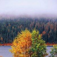 Алтайские горы. Язевое озеро. Национальный парк Катон Карагай. Восточный Казахстан. :: Arman
